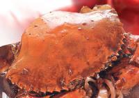 砵酒蟹的做法